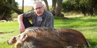 Per Kauffmann med vildsvin