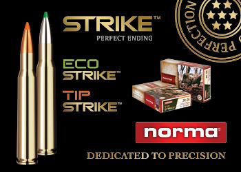 Norma Strike 350×250 sidebanner