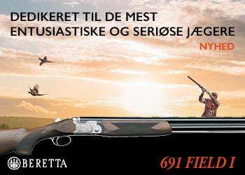 Beretta – 350×250