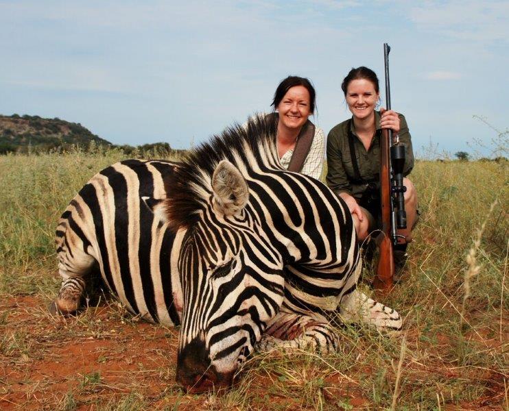 safari jagt Zebra