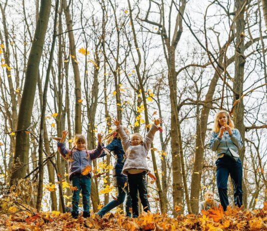 Projekt skoven i skolen