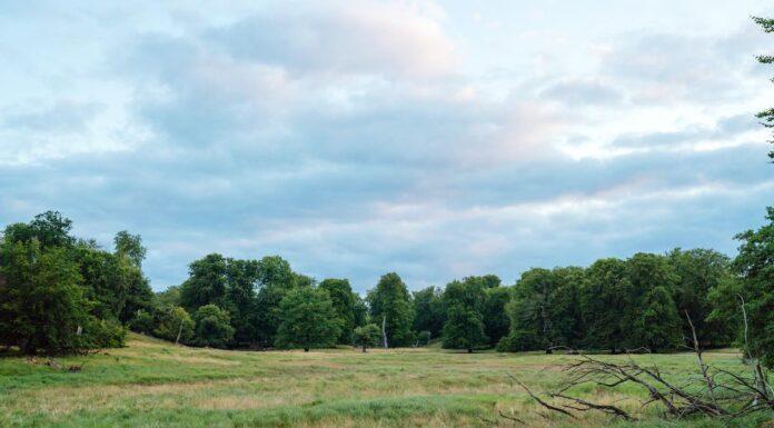 naturnationalpark